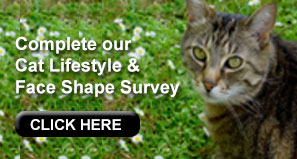 Complete our Cat Lifestyle and Face Shape Survey