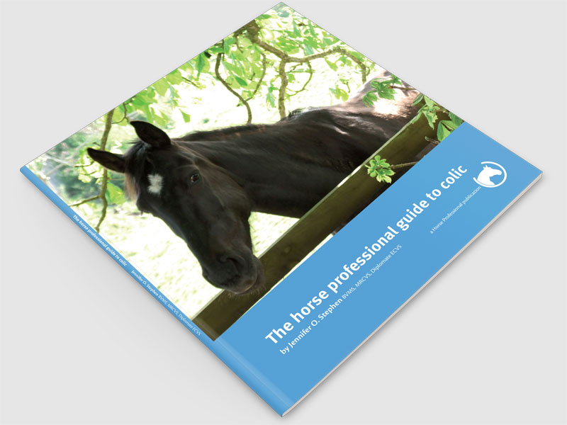 The Horse Professional Guide to Colic