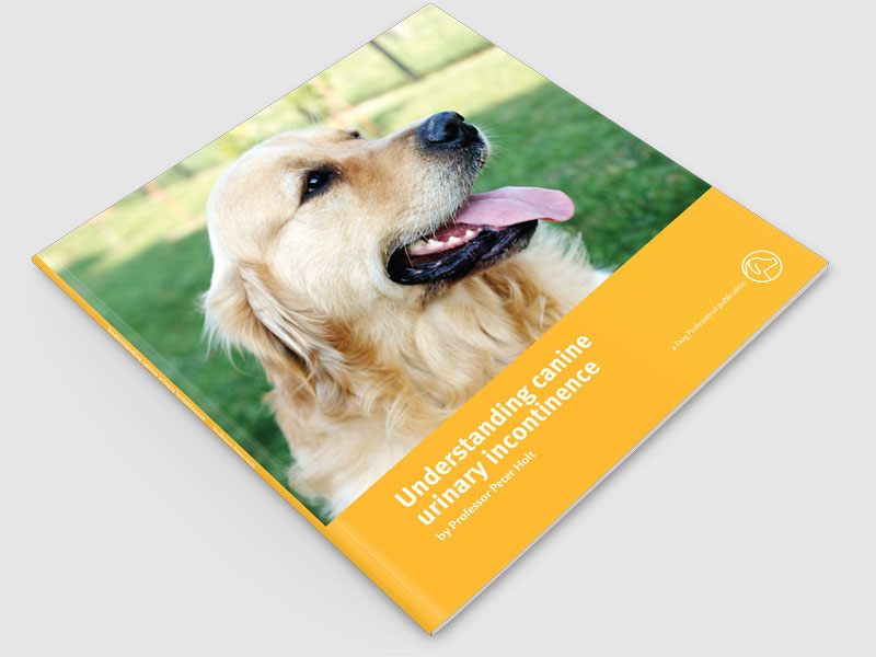 Understanding canine urinary incontinence