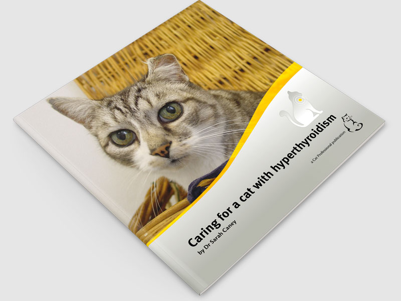 Caring for a cat with hyperthyroidism (2016) (download only)